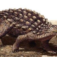 Ankylosaurus vs Stegosaurus