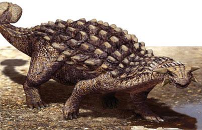 Ankylosaurus-dinosaur
