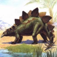 Predator vs Stegosaurus