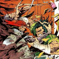 Wolverine vs Lady Deathstrike