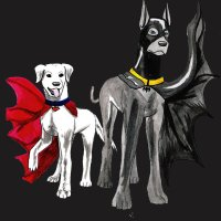 Ace vs Krypto