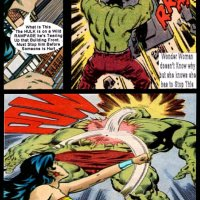 Wonder Woman vs Hulk
