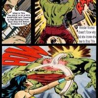 Wonder Woman vs Hulk