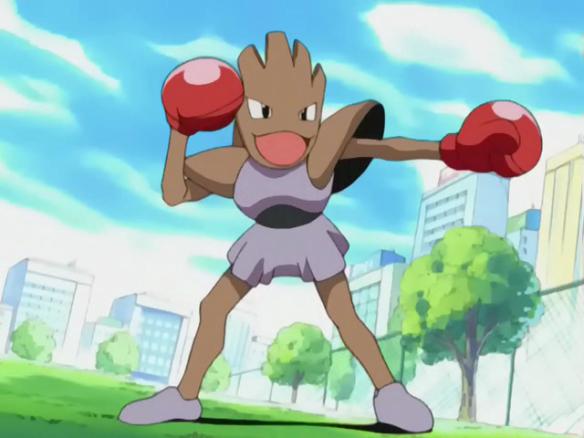 Invicible_Pokemon_Brothers_Hitmonchan