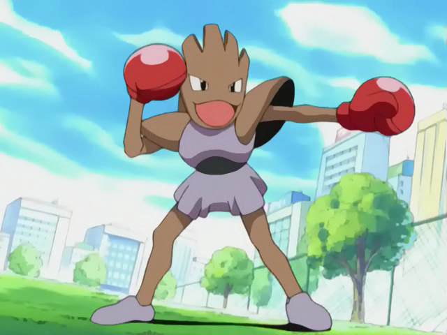 Invicible_Pokemon_Brothers_Hitmonchan