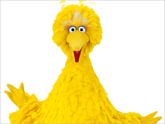Sesame Street  Season 43 Big Bird