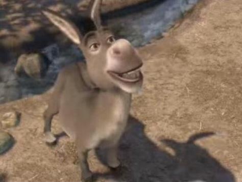 Mercado de Cavalos e Burros Donkeyshrek