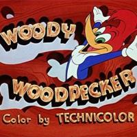 Woody Woodpecker vs Road Runner