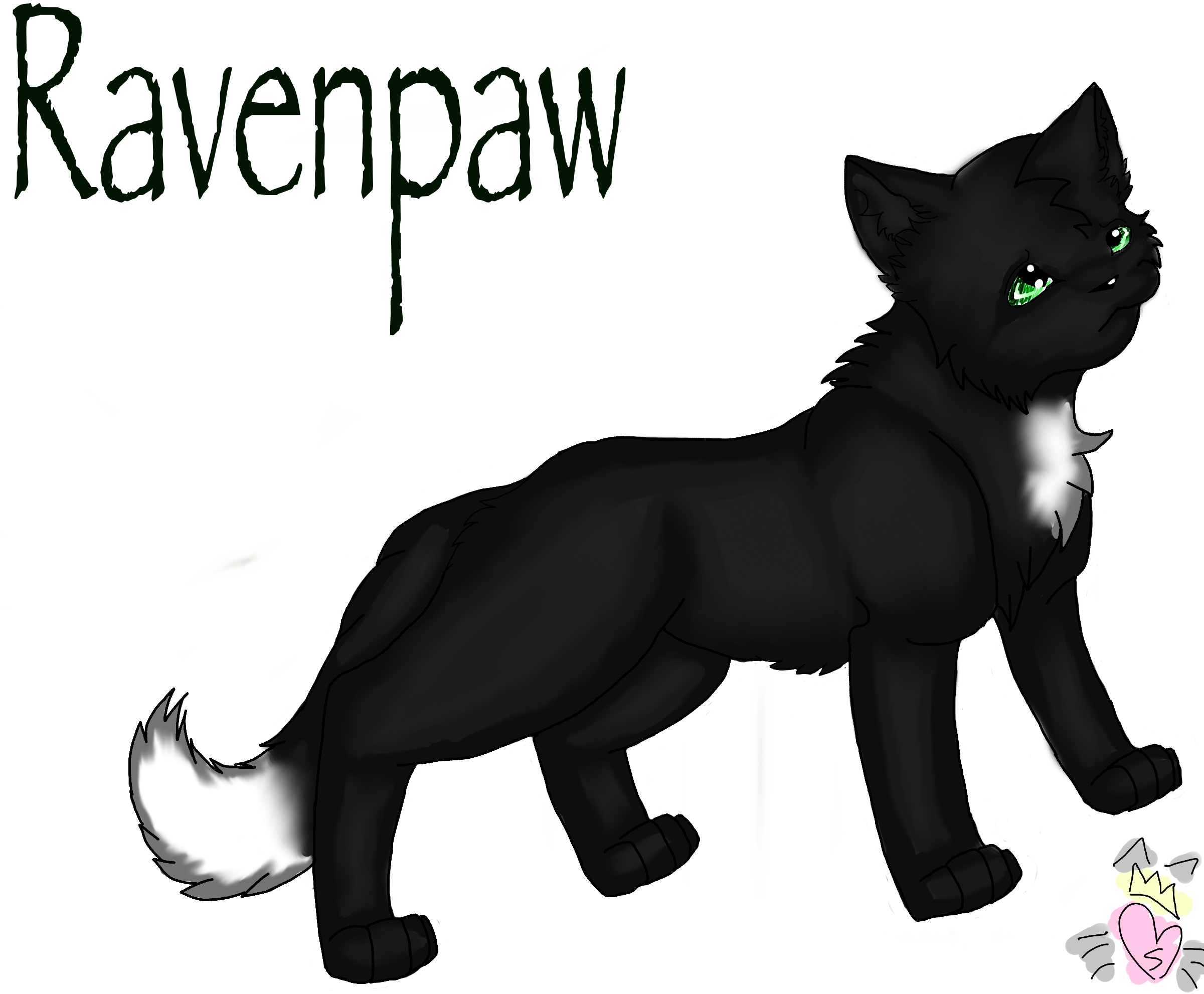 Nightpelt From Warrior Cats