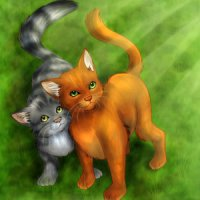 Firestar vs Graystripe