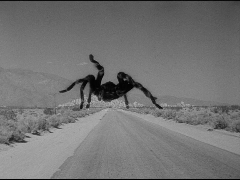 a Jack Arnold Tarantula DVD Review PDVD_013