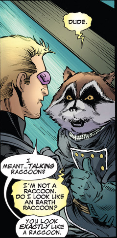 2721135-rocket_raccoon_and_hawkeye