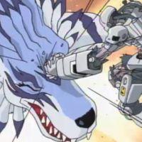 Garurumon vs Andromon