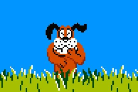 Duck-hunt-dog