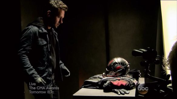 marvel-ant-man-paul-rudd-111998-ant-man-movie-speculation-will-we-have-giant-man-jpeg-239155